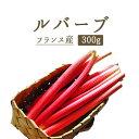 ルバーブ rhubarb 西洋野菜 ジャムやタルトに<フラン...