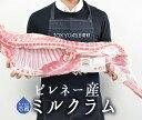 【フレッシュ 冷蔵】 ラム肉 乳飲み仔羊 半身 ミルクラム アニョー・ド・レ <フランス ピレネー産> 【約2.5-3.5kg】【送料無料】