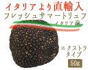 【季節限定】フレッシュ サマートリュフ エクストラ トリュフ<イタリア産>【50g