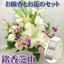 Img62433983