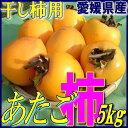【愛媛県産】あたご柿 約 5kg (干し柿・吊るし柿・さわし柿用 渋柿・愛宕柿)