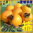 送料無料【愛媛県産】あたご柿 約 10kg (干し柿・吊るし柿・さわし柿用 渋柿・愛宕