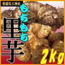 !!送料無料!! 【愛媛県大洲産】里芋(さといも)2kg...