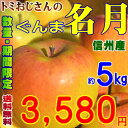 【送料無料】在庫限り!希少りんご!長野県産 ぐんま名月(めいげつ) Cランク(家庭用)約5kg訳あり(キズ、色ムラなど)爽やかな甘さ!