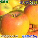 【送料無料】希少りんご!長野県産 ぐんま名月(めいげつ) Cランク(家庭用)約10kg訳あり(キズ、