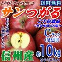 【予約】【送料無料】長野県産 サンつがる Cランク(家庭用)約10kg(24-36玉)訳あり