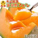 敬老の日 富良野メロン 特大XLサイズ1玉詰[1玉約2kg]...