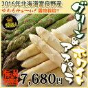 富良野産グリーンアスパラと生ホワイトアスパラの贅沢2種類セット♪北海道の畑から新鮮直送送料無料♪どちらも食べたいアスパラセット!