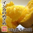 【送料無料】北海道 幕別産 幻のじゃがいも インカのめざめ 約10kg