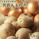 男爵&玉ねぎセット10kg 混みサイズ 送料無料 秀品 北海道 富良野産 北海道産 じゃがいも 玉ねぎ お歳暮