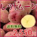 【送料無料】赤いじゃがいもレッドムーン5kg 最高のじゃがバターが出来ます!05P01Oct16