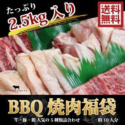 送料無料 焼肉セット 2k500g 内容は牛肉 焼肉 カルビ、牛タン オーカク(ハラミ)豚カルビ 鶏モモ 黒毛和牛肉 国産 焼き肉セット、バーベキューセット/BBQセット/bbq 肉 セット/bbqセット/BBQセット/牛肉 焼肉/テラ盛/お試し/バーベキュー 肉 セット カルピ