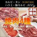 【ギフト】焼肉 セット 送料無料 800g 牛肉 カルビ/牛タン/ハラミ/豚バラ焼き肉セット/バー
