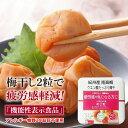 【トノハタ公式】紀州産南高梅 クエン酸たっぷり梅干 減塩 2% 500g 機能性表示食品