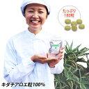 キダチアロエ錠剤100%×180粒入り �
