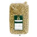 コーヒーの発芽用種子 1kg (ブラジル)