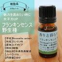 フランキンセンス(野生種)10ml/アロマオイル/エッセンシャルオイル/精油【香りと暮らす】