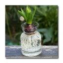 ガラスベース「Bulbo vase」