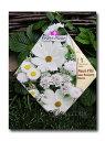 【Royalfleur】ミックス種「ホワイト フラワー ガーデン」