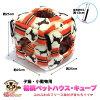 子猫・小動物用福桃ペットハウス・キューブMホースストライプ福桃ランドオリジナル