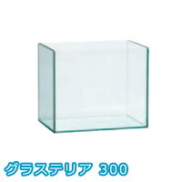 グラステリア300