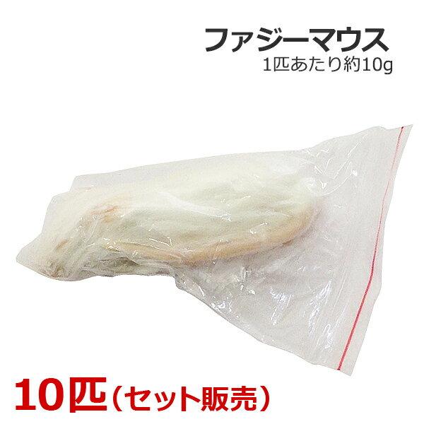 冷凍 ファジーマウス 10匹の商品画像