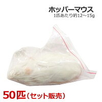 冷凍ホッパーマウス50匹