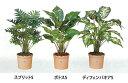 光触媒の人工観葉植物!【送料無料】C4704-30(A5013-30)ポトスS(鉢付き)