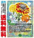 ショッピングデュエルマスターズ 【中古】 [R] マリゴルドIII (RP11-28/自然)