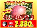 須坂市 山吉果樹園 ワケあり「あいかの香り」5kg