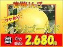 須坂市 山吉果樹園 ワケあり「シナノゴールド」5kg