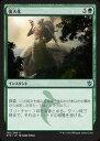 マジックザギャザリング MTG 緑 日本語版 強大化/Become Immense KTK-130 アンコモン【ランクA】【中古】