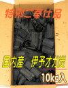 伊予オガ炭  10kg  10P05Nov16