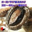 【活】特大活あわび(300〜400g)1個