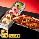 ショッピングうなぎ 父の日 ごかせ川の鰻 180g×1本 好きメッセージマカロン5個セット 国産 うなぎ ギフト おとりよせ