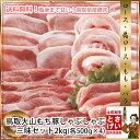 送料無料鳥取大山もち豚 しゃぶしゃぶ三昧セット2kg豚肉 ぶた肉 ブタ肉 お鍋