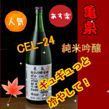 亀泉酒純米吟醸純米吟醸酒生酒CEL-2418L日本酒超人気酒一升瓶四国高知父の日