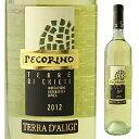 アブルッツォ州No.1生産者のリーズナブル辛口白ワイン
