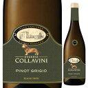 б┌6╦▄б┴┴ў╬┴╠╡╬┴б█е╘е╬ е░еъб╝е╕еч 2013 е│е├ещеЇегб╝е╦ 750ml [╟Є]Pinot Grigio Collavini