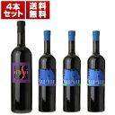 楽天トスカニー イタリアワイン専門店【送料無料】フリウリの偉大な自然派「ラディコン」話題の新商品「RSエッレエッセ」も入った赤白4本セット【北海道・沖縄・離島は追加送料がかかります】