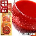 【送料無料】ブラッドオレンジジュース 1L×6本 オルトジェル[冷凍食品]【北海道・沖縄・離島は追加送料がかかります】[冷凍食品のみ同梱可]