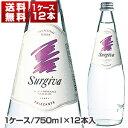 【送料無料】スルジーヴァ スパークリング 750ml 1ケース (12本入) [同梱不可商品]【北海道・沖縄・離島は追加送料がかかります】