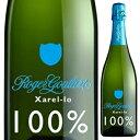 б┌6╦▄б┴┴ў╬┴╠╡╬┴б█елеЇеб 100% е┴еуеье├еэ 2011 еэе╕еуб╝ е░ещб╝е╚ 750ml [╟Є]Cava 100% Xarel.lo Roger Goulart