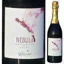 ショッピングワイン sake place 【6本〜送料無料】メトド クラッシコ ネッビオーロ 2013 カンパーロ 750ml [発泡赤]Metodo Classico Nebbiolo Camparo [自然派]