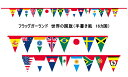 フラッグガーランド ワールドフラッグ・ミニ万国旗(手書き風国旗 16枚 全長2800mm)