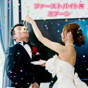 【20%割引セール中】二人でファーストバイトスプーン【演出アイテム】結婚 写真 撮影