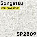壁紙 サンゲツ SP2809 【2021-2023】抽象的なテクスチャーが特徴的