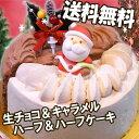 送料無料★人気の生チョコケーキとキャラメルケーキの「ハーフ&ハーフ」クリスマスケーキ