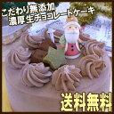 送料無料★濃厚チョコたっぷり♪無添加生チョコケーキ・生チョコフレンズ5号(ホール)チョコレートケーキ・クリスマス