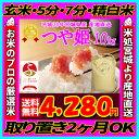 ■新米■30年産 宮城県産 つや姫 10kg!玄米,5分,7分,精白米(精米時重量約1割減)【米】【dp】【ne】【SS12】